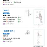 肘・前腕の可動域